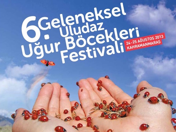 Uğur Böcekleri Festivali